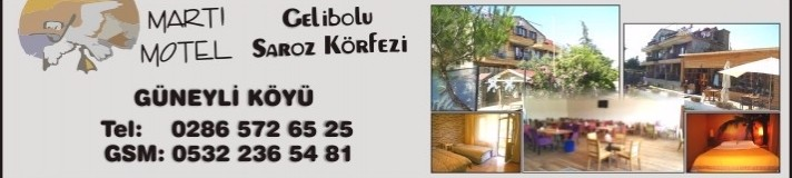 5-marti-hotel-712x160_c