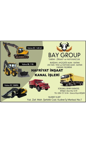 Bay Group