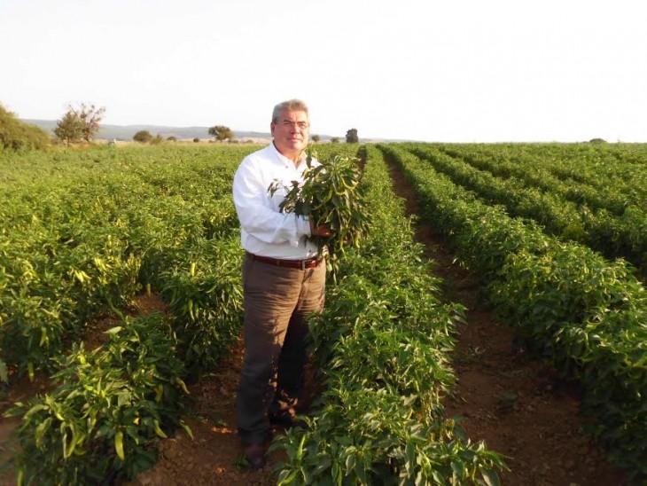"""Değirmendereli, """"AKP,çiftçilerimizi ağa marabalığından şirket marabalığna dönüştürüyor"""