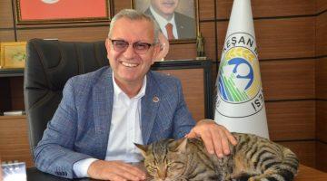 KeşanBelediye Başkanı yazlıkçıların emanet ettiği sokak kedisini makamına aldı