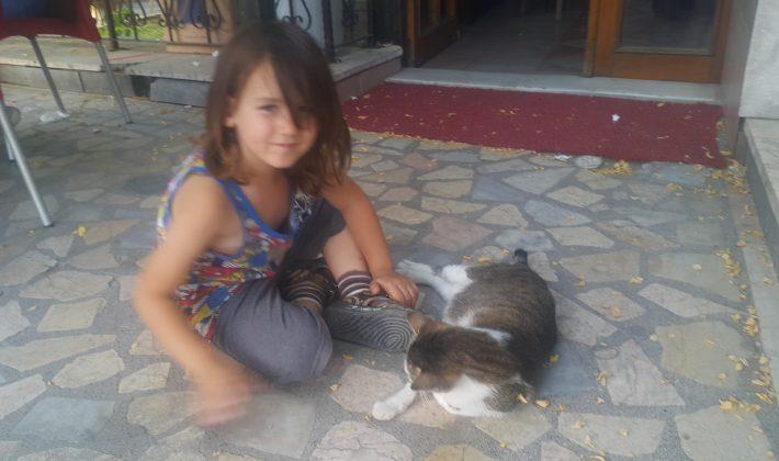 Keşanlı Küçük Çocuğun Hayvan Sevgisi…