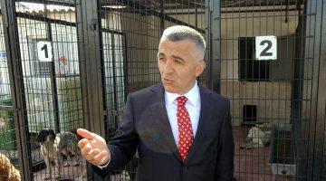 """Kırklareli Valisi Bilgin: """"12 köpeği katleden şüpheliler tespit edildi"""""""