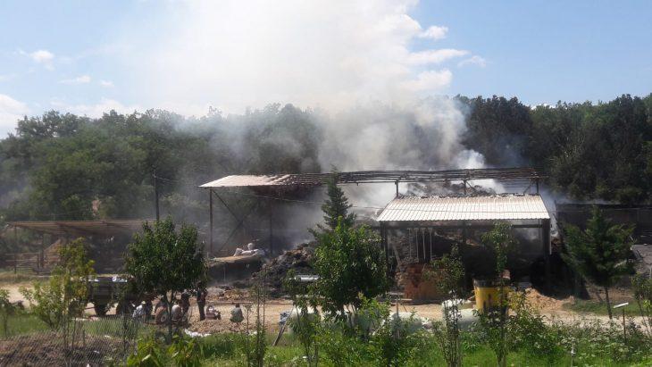 Kırklareli'nde hayvan çiftliğinde yangın