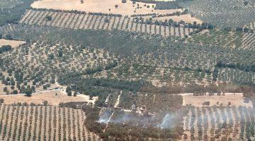 Çanakkale'deki Alexandria Troas Antik Kenti'nde çıkan yangın söndürüldü