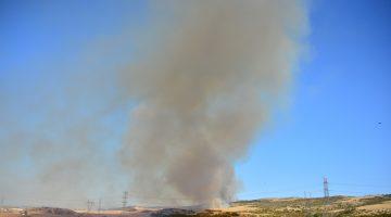 Gelibolu Kavak'ta Orman Yangını