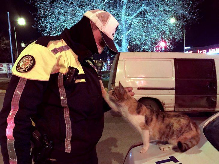 Soğukta üşüyen sokak kedisi denetim yapan polis ekibine sığındı