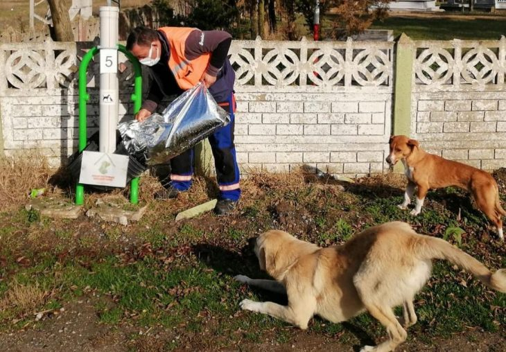 Kırklareli Valiliği'nden sokak hayvanlarına mama desteği