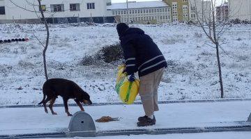 Keşan Belediyesi sokak hayvanlarını besledi