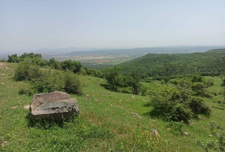 """Edirne'de Meriç Nehri'nin merkezde kalan kısmı ile Çandır köyü """"doğal sit alanı"""" ilan edildi"""