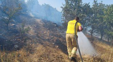 Çanakkale'de ormanlık alanda çıkan yangında 10 hektar alan zarar gördü
