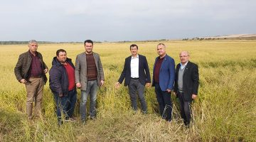 Gaytancıoğlu, dolu zararı gören köyleri ziyaret etti