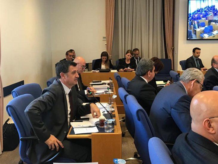 Gaytancıoğlu, Plan Bütçe Komisyonu'nda Konuştu…