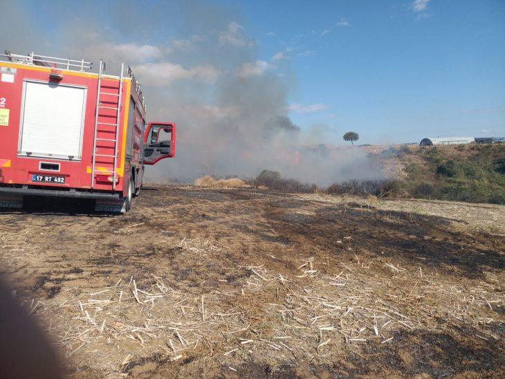 Gelibolu'da Ot Yangını Çiftliklere Ulaşmadan Söndürüldü