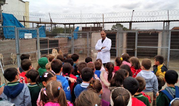 Öğrencilerden Keşan Belediyesi Hayvan Barınağı'na Ziyaret