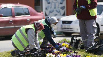 Baharın Çiçekleri, Kırklareli'nde Kadın Elleriyle Toprağa Kavuşuyor