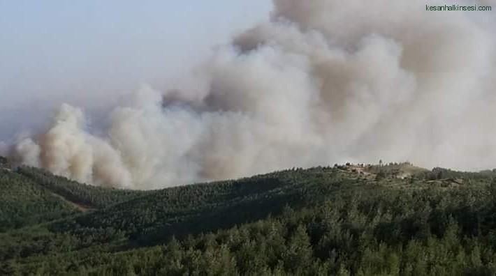 Karahisar Köyü'nde 300 Dönüm Buğday Kül Oldu