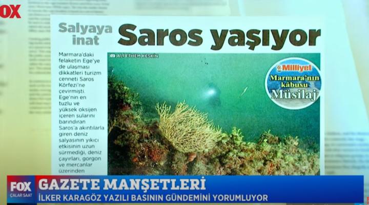 Saros Körfezi için müsilaj konusunda İşçimen'den müjdeli haber